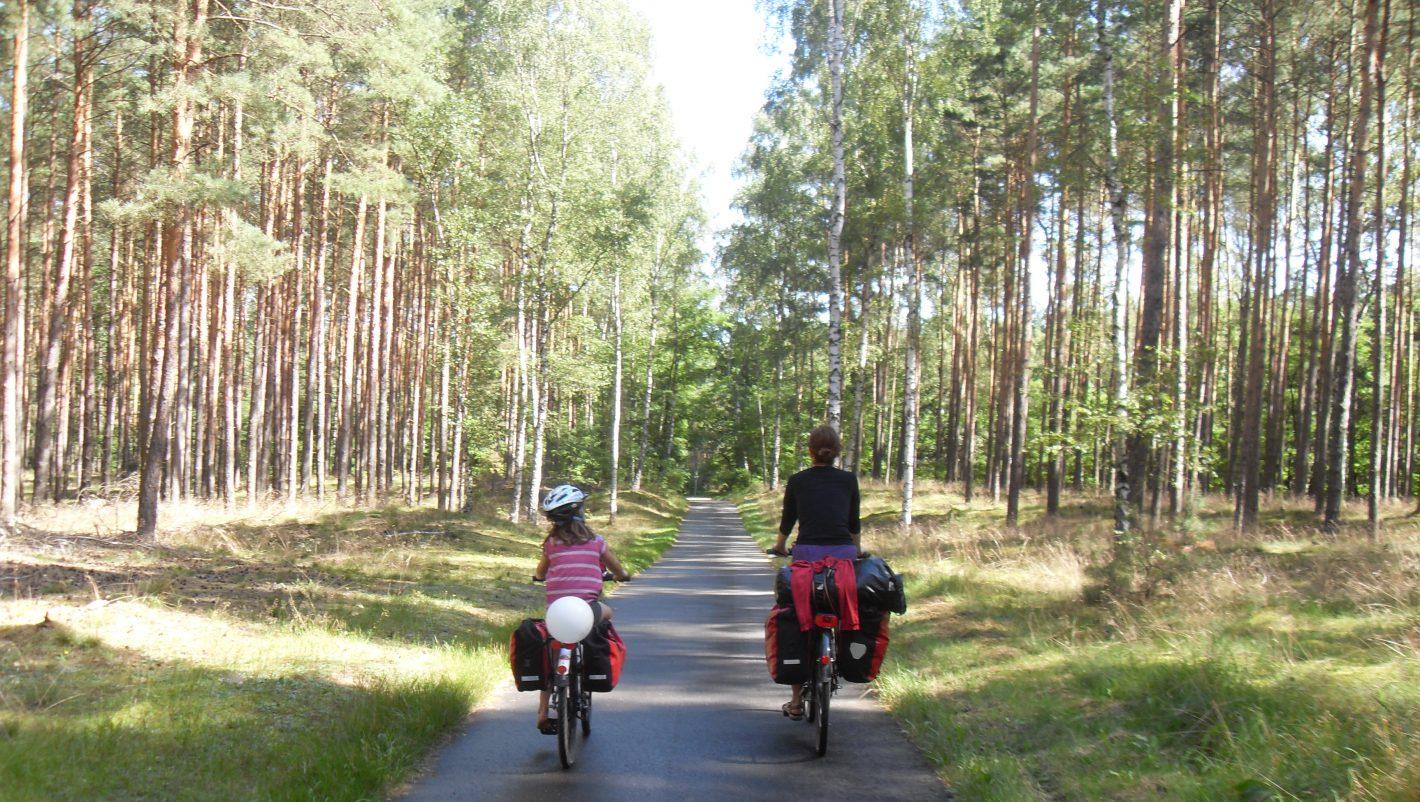 Radreisende Kiefernwald Radweg Berlin-Usedom