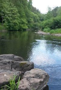 Fluss Wupper ruhig romatisch