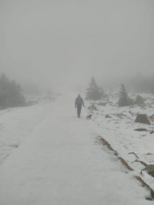 Aufstieg_zum_Harz_Brocken_Winter_2020_nebelig_eisiger_Boden